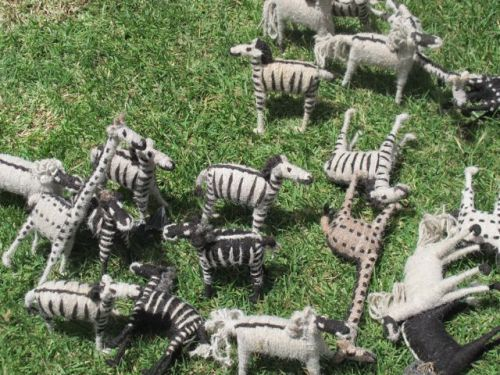 zebras and giraffs