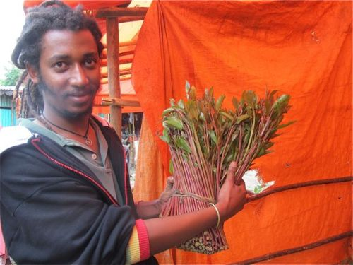 biniyam and top quality khat