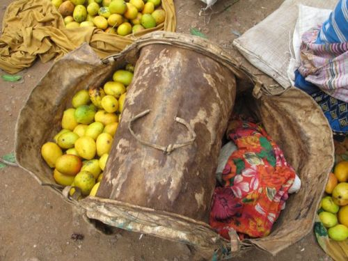 donkey basket with mangoes