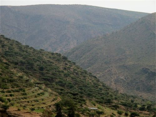 mountain road  to harar